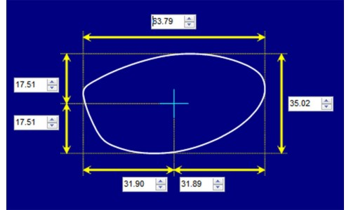 Arnette AN1001 Replacement Sunglass Lenses