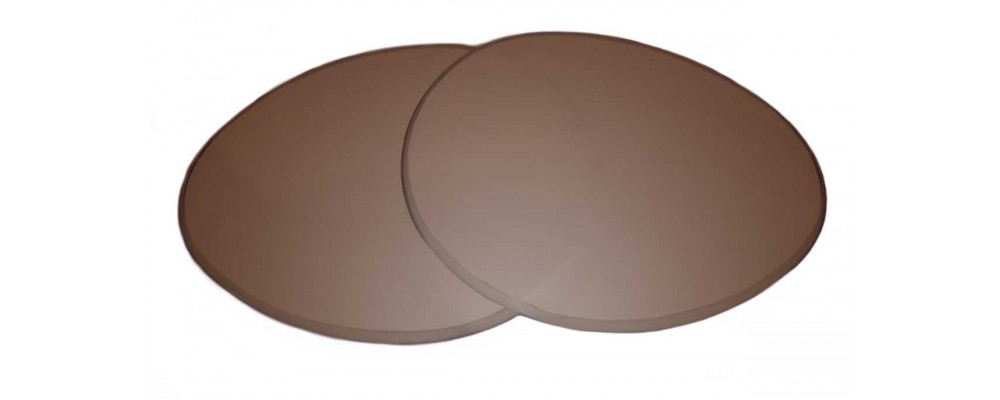 c82c3657f3 Sunglass Fix Replacement Lenses for Ray Ban RB2447 - 52mm wide