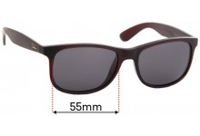 Ray Ban RB4202 Andy Replacement Sunglass Lenses - 55mm Wide
