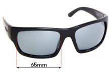 Spotters Freak Replacement Sunglass Lenses - 65mm Wide